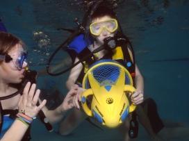 Potápníčci